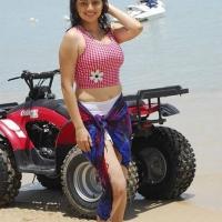 actress-hema-malini-hot-stills7