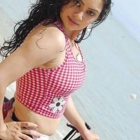 actress-hema-malini-hot-stills9