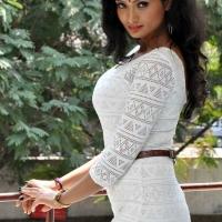1427990127ishita-vyas-photoshoot-at-miss-leelavathi-press-meet1