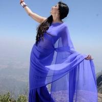 1427730786actress-poonam-kaur-beautiful-saree-stills2