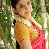 1427730786actress-poonam-kaur-beautiful-saree-stills3