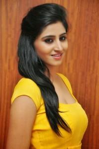 Actress-Shalini-Hot  stills jpg (1)