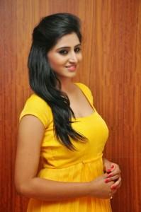 Actress-Shalini-Hot  stills jpg (10)