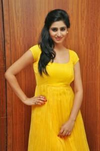 Actress-Shalini-Hot  stills jpg (11)