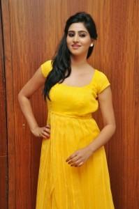 Actress-Shalini-Hot  stills jpg (12)