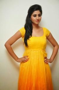 Actress-Shalini-Hot  stills jpg (13)