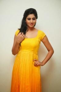 Actress-Shalini-Hot  stills jpg (14)