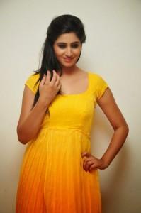 Actress-Shalini-Hot  stills jpg (15)
