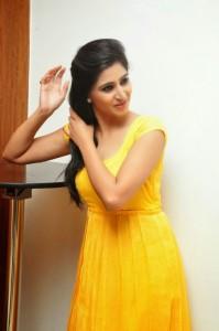 Actress-Shalini-Hot  stills jpg (16)