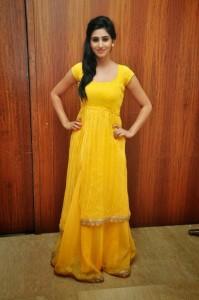 Actress-Shalini-Hot  stills jpg (17)