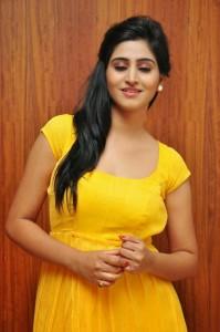 Actress-Shalini-Hot  stills jpg (2)