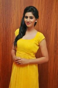 Actress-Shalini-Hot  stills jpg (3)