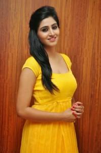 Actress-Shalini-Hot  stills jpg (4)