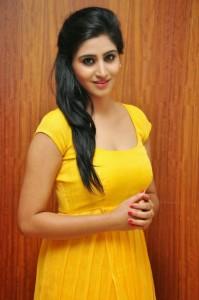 Actress-Shalini-Hot  stills jpg (5)