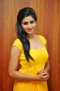Actress-Shalini-Hot  stills jpg (6)