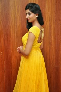 Actress-Shalini-Hot  stills jpg (7)