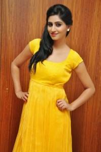 Actress-Shalini-Hot  stills jpg (8)