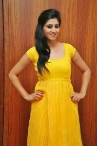 Actress-Shalini-Hot  stills jpg (9)