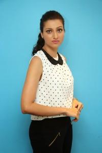 Hamsa Nandini Latest Pics (13)