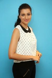 Hamsa Nandini Latest Pics (14)