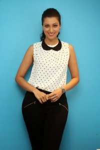 Hamsa Nandini Latest Pics (18)
