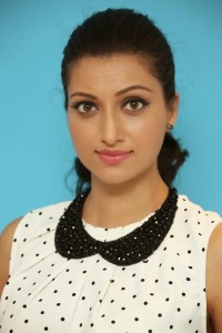 Hamsa Nandini Latest Pics (25)