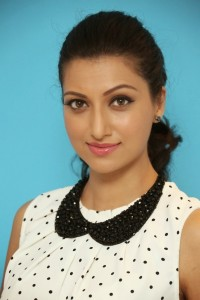 Hamsa Nandini Latest Pics (26)