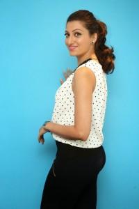 Hamsa Nandini Latest Pics (6)