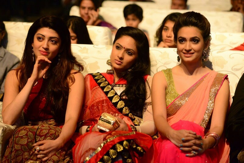 Santosham-12th-Anniversary-Awards-2014-Stills-14