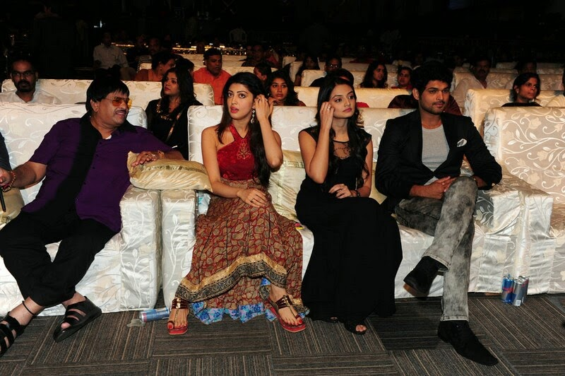 Santosham-12th-Anniversary-Awards-2014-Stills-42