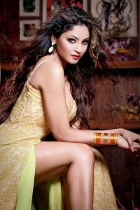 Actress Shilpi Sharma Latest Cute Hot Exclusive Spicy Photoshoot Gallery (1)