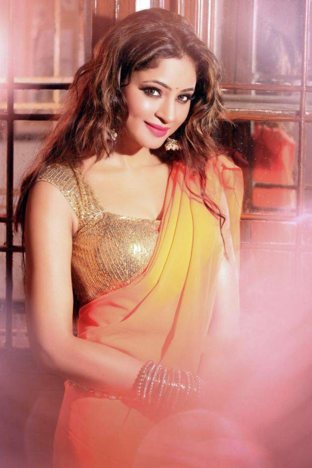 Actress Shilpi Sharma Latest Cute Hot Exclusive Spicy Photoshoot Gallery (4)