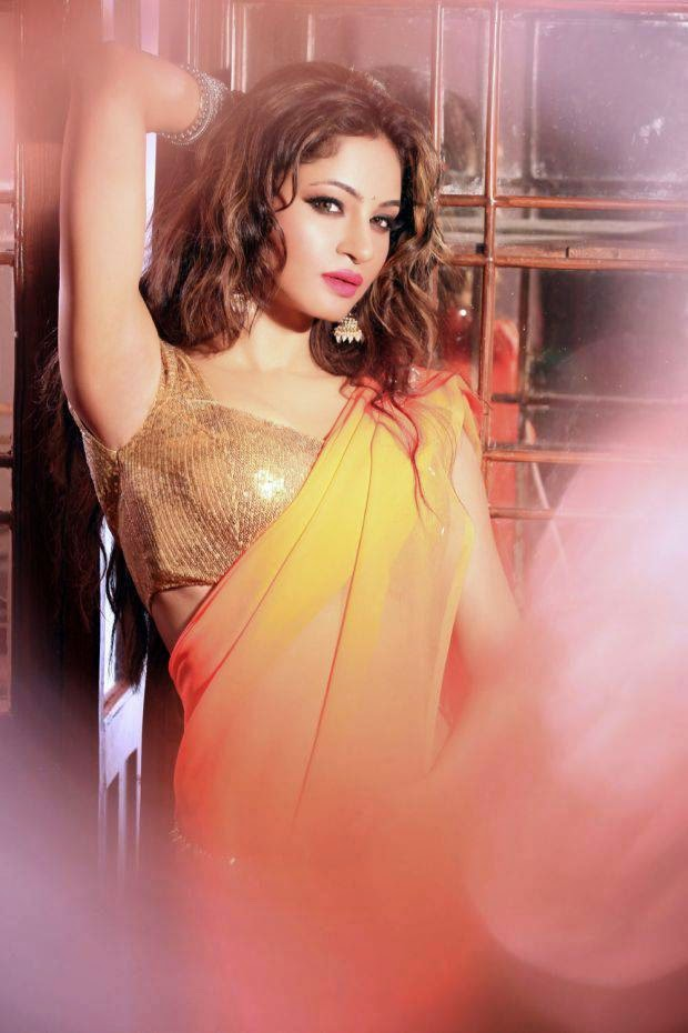Actress Shilpi Sharma Latest Cute Hot Exclusive Spicy Photoshoot Gallery (6)