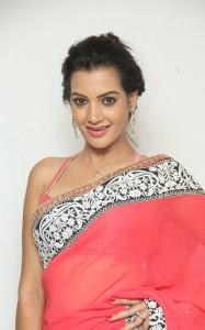 Deeksha-Panth-Latest (2)