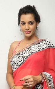 Deeksha-Panth-Latest (3)