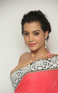 Deeksha-Panth-Latest (7)