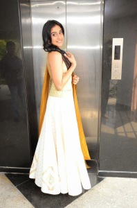 Actress Regina Cassandra Latest Cute Hot Exclusive Beautiful Yellow Dress Spicy Photos Gallery At Subramanyam For Sale Telugu Movie Press Meet (15)