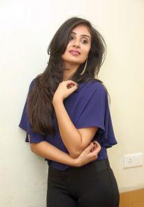 Bhanu Sri Mehra New Photos_7