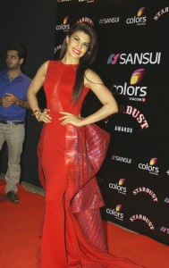 Bolly celebrities at sansui  colors stardust awrds gallery,Bolly celebrities at sansui  colors stardust awrds photos, (10)