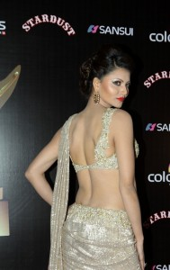 Bolly celebrities at sansui  colors stardust awrds gallery,Bolly celebrities at sansui  colors stardust awrds photos, (11)