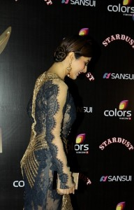 Bolly celebrities at sansui  colors stardust awrds gallery,Bolly celebrities at sansui  colors stardust awrds photos, (24)