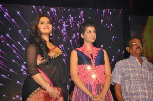 Anushka, Hamsanandini at Rudhramadevi Audio Launch (6)