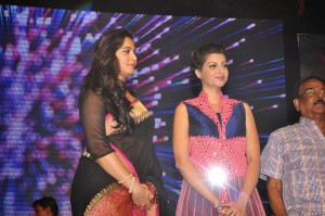 Anushka, Hamsanandini at Rudhramadevi Audio Launch (7)