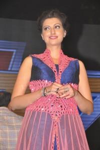 Anushka, Hamsanandini at Rudhramadevi Audio Launch (9)