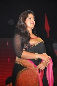Anushka Stills at Rudhramadevi Audio Launch (22)