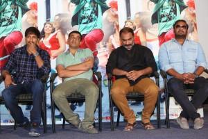 Jil Movie Theatrical Trailer Launch Photos (30)