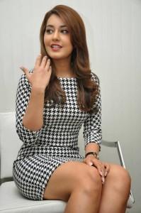 Rashi Khanna Stills at Jil Interview (38)