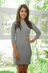 Rashi Khanna Stills at Jil Interview (43)
