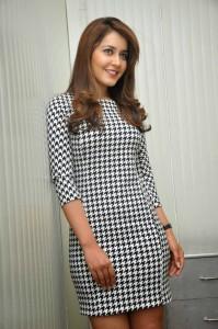 Rashi Khanna Stills at Jil Interview (44)