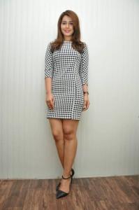 Rashi Khanna Stills at Jil Interview (47)